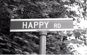 Happy Road 2